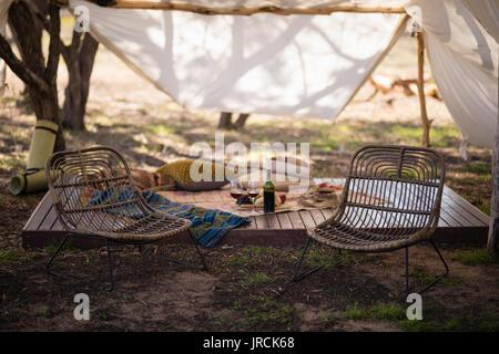 Accessoires de pique-nique en forêt Photo Stock