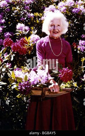 Photographie de personne âgée retraitée active vieille femme heureux jardinage Photo Stock