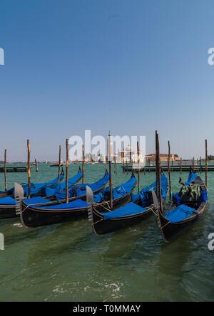 Gondoles garé sur le grand canal, Venise, Vénétie, Italie Photo Stock