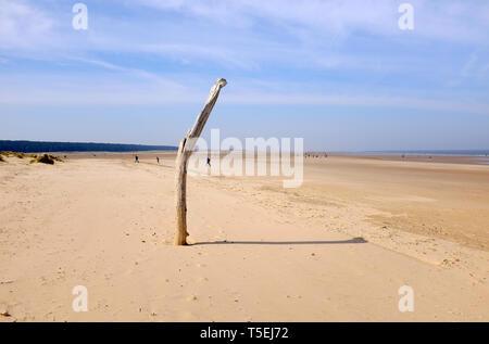 Holkham beach, North Norfolk, Angleterre Photo Stock