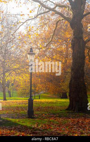 Royaume-uni, Angleterre, Londres, Green Park en automne Photo Stock