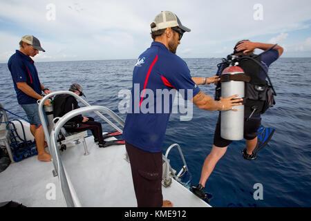 Équipage de bateau, aide les plongeurs entrant dans l'eau Photo Stock