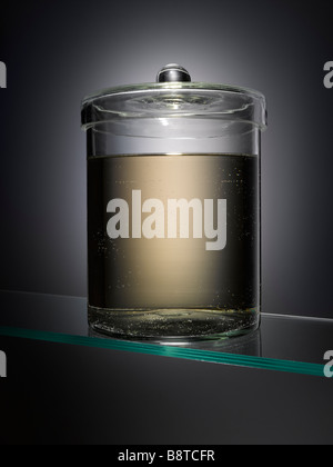 Un spécimen vide jar Photo Stock