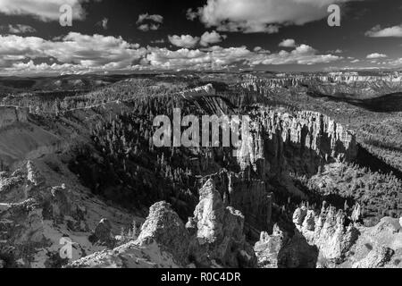 Bryce Canyon National Park, Utah Photo Stock