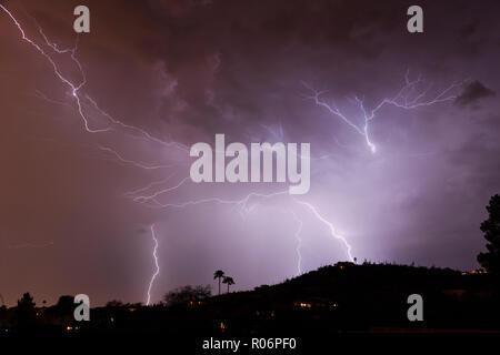 La foudre, les moussons, araignée, Tucson, AZ Photo Stock
