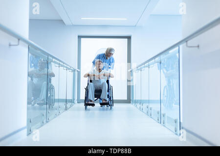 Vue avant de race mixte femme médecin en hijab poussant de race mixte senior male patient in wheelchair at corridor dans l'hôpital. Photo Stock