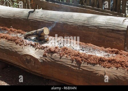 La construction de pirogues en utilisant le feu à un journal de tranchées, Qualla Réservation Cherokee, Caroline du Nord. Photographie numérique Photo Stock