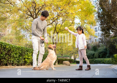 Young family Playing with dog Photo Stock