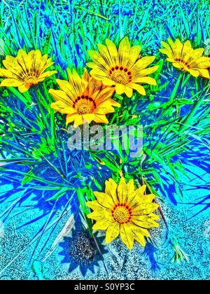 L'image d'un peintre de fleurs jaunes Photo Stock
