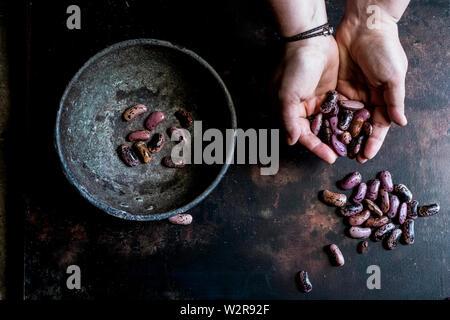High angle close up of human hands holding bol en métal gris moucheté pourpre avec des haricots. Photo Stock