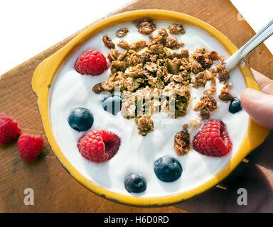 plat d'yogourt Photo Stock