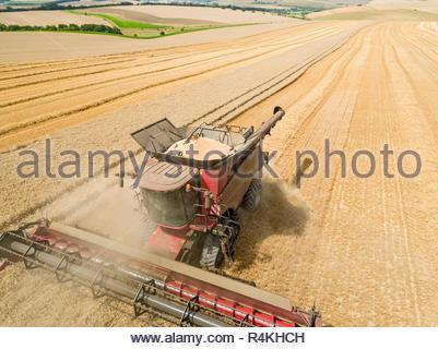 Paysage de l'antenne de la récolte à la moissonneuse-batteuse de blé d'été de coupe avec des grandes cultures et de remorque tracteur agricole sur ciel bleu Photo Stock