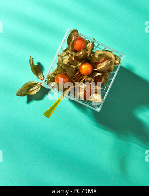 Physalis Photo Stock