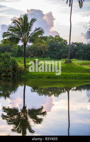 La baie de Hanalei, Kauai, Hawaii, Kauikeolani Estate, palmiers, nuages, pelouse, étang Photo Stock
