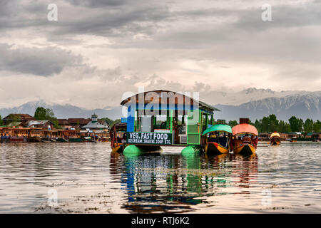 Dal lake, à Srinagar, Jammu-et-Cachemire, J&K, Inde Photo Stock