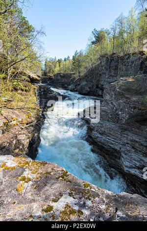 Printemps, rivière, cascade, rapides, Rauma, Romsdal, Norvège, Europe Photo Stock