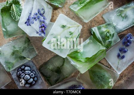 Herb des cubes de glace Photo Stock