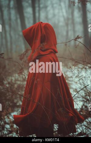 Manteau rouge en forêt de brouillard Photo Stock