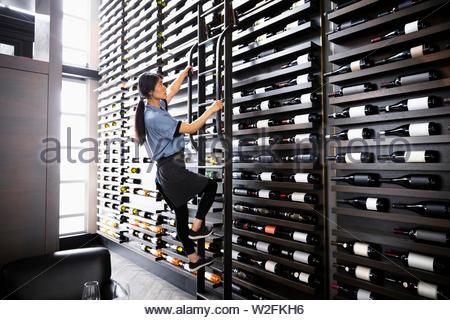 Sommelier vin femme escalade rack échelle en restaurant Photo Stock
