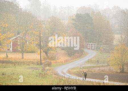 Jeune couple on rural road Photo Stock