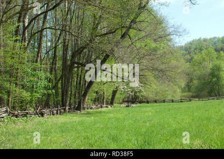 Les pâturages d'une ferme de montagne, parc national des Great Smoky Mountains, frontière de NC et TN. Photographie numérique Photo Stock