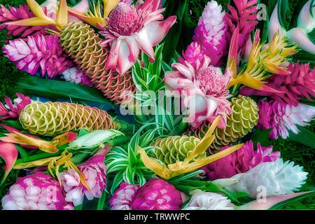 Mélange de fleurs tropicales, boquet. Kauai, Hawaii. Chaque fleur peut être identifié sur demande. Photo Stock