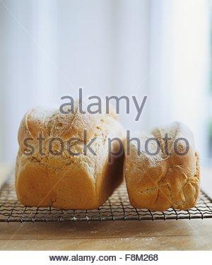 Pain frais, petits et grands, sur une grille de refroidissement Photo Stock