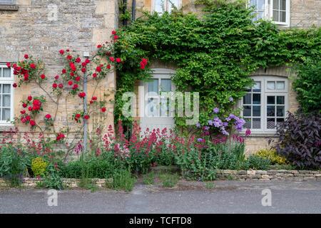 Roses rouges sur un chalet dans le village de Churchill, Cotswolds, Oxfordshire, Angleterre Photo Stock