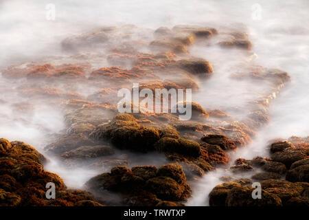 Les vagues de l'océan les roches de couverture. Poipu, Kauai, Hawaï Photo Stock