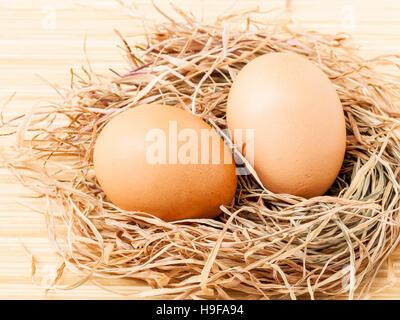 Des œufs frais brun au nid de foin . Photo Stock