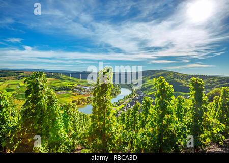 Urzig avec le nouveau pont de la Moselle, vallée de la Moselle, Rhénanie-Palatinat, Allemagne Photo Stock