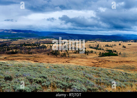 Le Parc National de Yellowstone, États-Unis Photo Stock