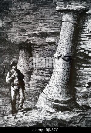 Une gravure représentant un tronc d'arbre fossile dans une mine de charbon à treuil près de St Etienne. En date du 19e siècle Photo Stock