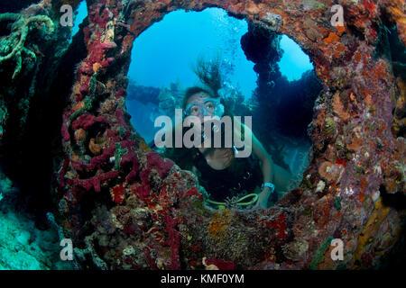Scuba Diver explore l'épave de Flagler's barge. Photo Stock