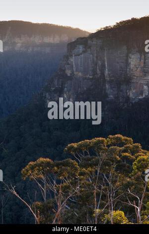 Formations rocheuses du plateau élevé dans le Parc National de Blue Mountains en Nouvelle Galles du Sud, Australie Photo Stock