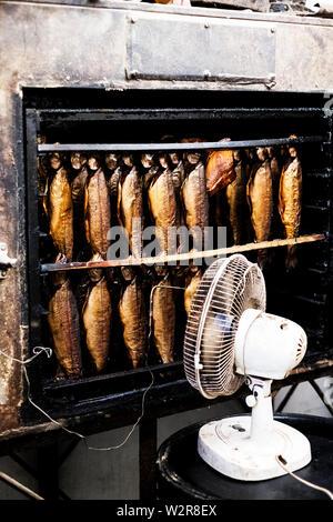 Close up de rangées de fumé truite fraîchement ensemble chez un fumeur, ventilateur blanc debout devant. Photo Stock