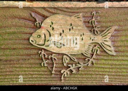 Dorade poisson d'eau douce grain de bois brun nature symbole sculpture haut-relief naturel sauvage de pêche Photo Stock