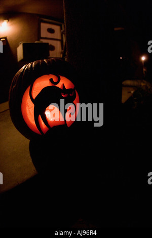 Allumé Jack O Lantern de sculptures de chat noir Photo Stock