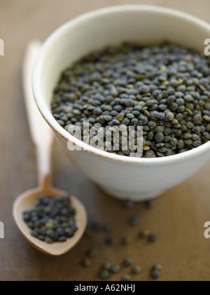 Lentilles du Puy tourné avec un appareil photo numérique moyen format professionnel Photo Stock