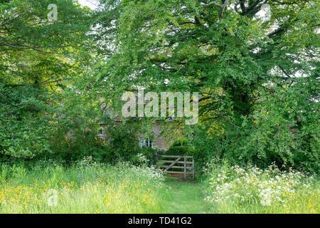 Chemin à travers la longue herbe tondue d'un cottage en pierre de Cotswold. Wyck Rissington, Cotswolds, Gloucestershire, Angleterre Photo Stock