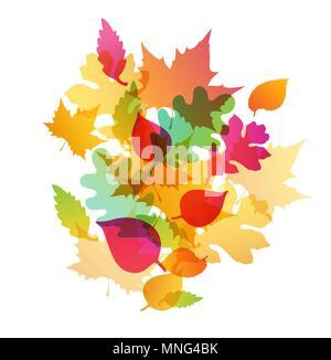 Automne fond abstrait lumineux à la chute des feuilles de chêne et d'érable Photo Stock