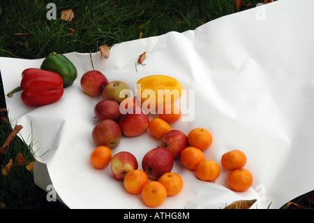 Fruti mixte et légumes stillife Photo Stock