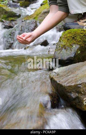 Buvette,boire,randonnées,ruisseau de montagne Photo Stock