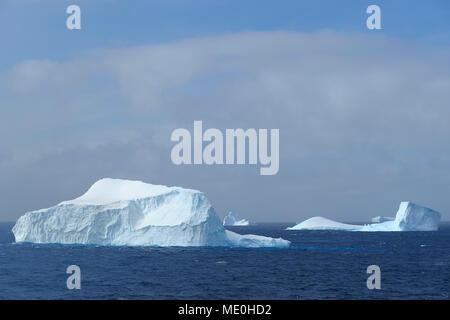 Sunlit icebergs flottant dans le son à l'Antarctique la péninsule Antarctique, l'Antarctique Photo Stock
