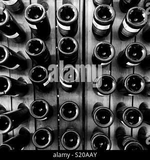 Des rangées de bouteilles de vin Photo Stock