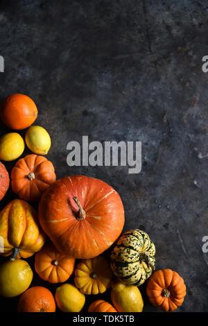 Agrumes et de citrouille Photo Stock