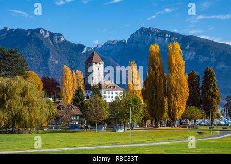 Speiz, lac de Thoune, Berner Oberland, Suisse Photo Stock