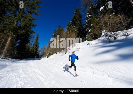 Un pareggiatore viene eseguito attraverso una foresta alpina. Immagini Stock