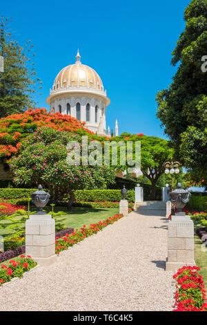 Israele, Distretto di Haifa, Haifa. Il Santuario del Bab al bahaismo giardini. Immagini Stock