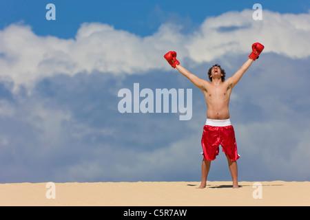 Boxer celebra in cima al mondo. Immagini Stock